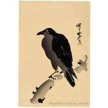 Unknown: Crow on Branch (Descriptive Title) - Honolulu Museum of Art