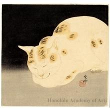 河鍋暁斎: Sleeping Cat - ホノルル美術館