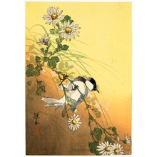 Itö Sözan: Bird on a Chrysanthemum - Honolulu Museum of Art