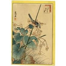 Sügakudö: Sparrow and Aronia - ホノルル美術館