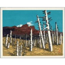 Yamaguchi Susumu: Burned Mountain with Dead Forest - Honolulu Museum of Art