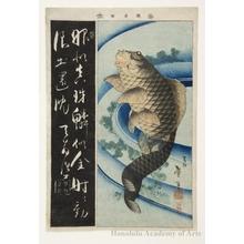 Katsushika Taito II: Carp - ホノルル美術館