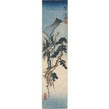 Katsushika Taito II: Pine Tree and Waterfall - ホノルル美術館
