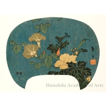 Katsushika Taito II: Morning Glory and Rose Mallow - ホノルル美術館