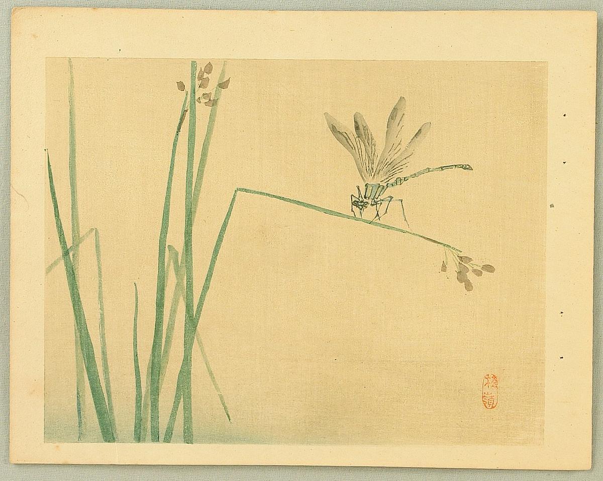Kono Bairei Dragonfly