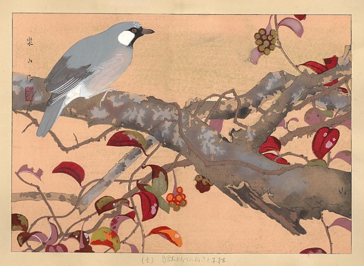 Rakusan Tsuchiya Bird On Branch Japanese Art Open Database Ukiyo E Search