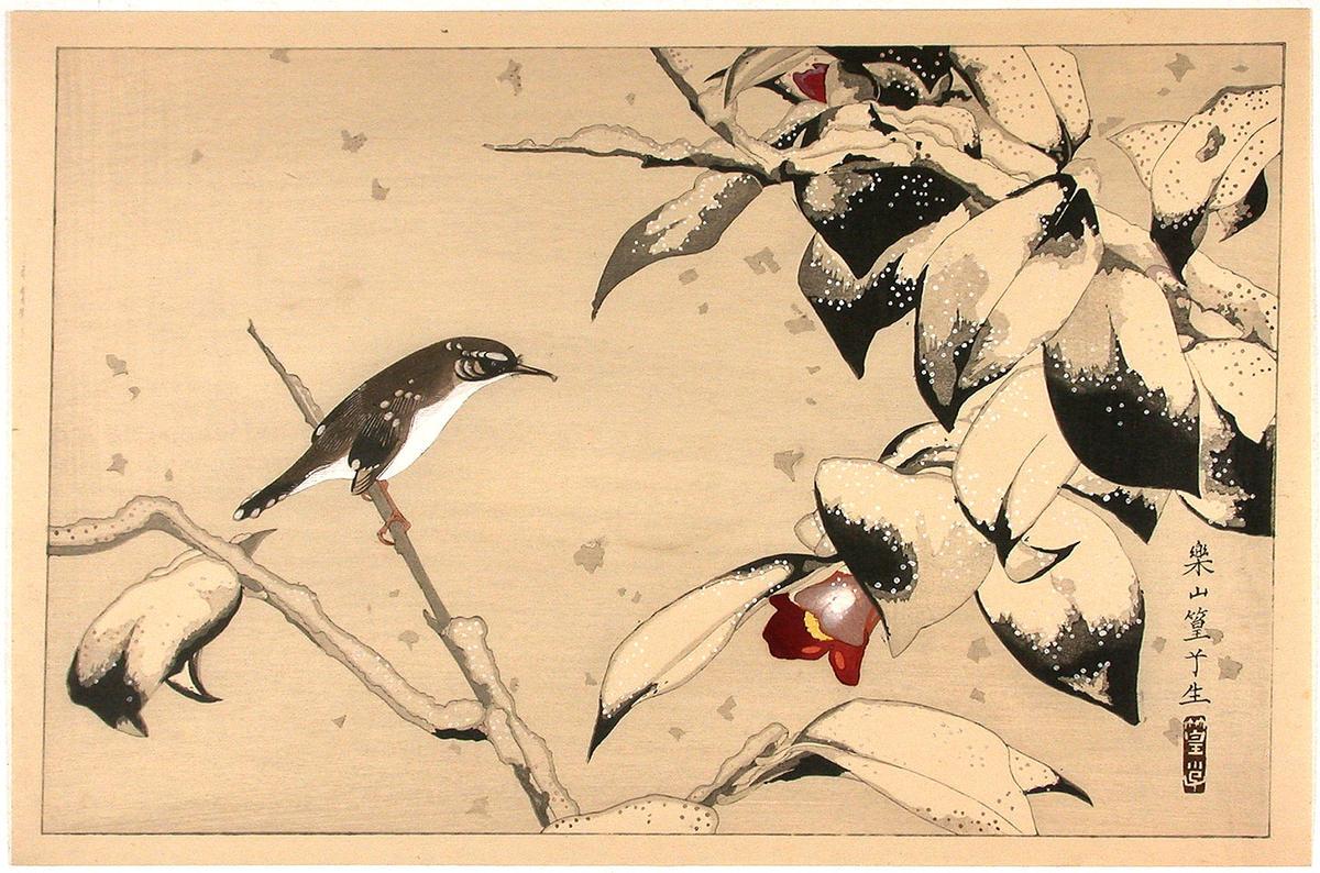 asian swallows