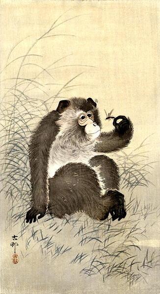 https://data.ukiyo-e.org/jaodb/images/Shoson_Ohara-No_Series-Monkey_and_Dragonfly-00033211-021225-F06.jpg
