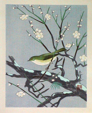 大野麦風: Unknown, bird, spring - Japanese Art Open Database
