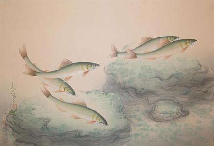 大野麦風: Ayu- Sweetfish — 鮎 - Japanese Art Open Database