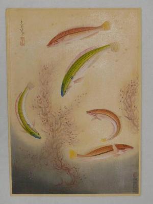Bakufu Ohno: Bera — ベラ - Japanese Art Open Database