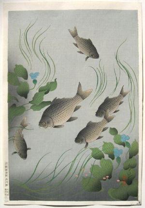 大野麦風: Crucian Carp — フナ - Japanese Art Open Database