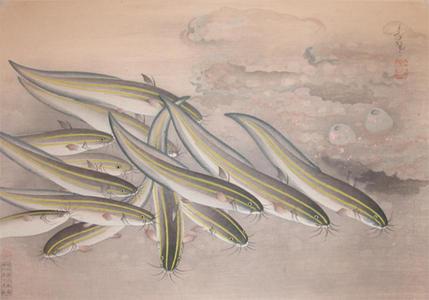 Bakufu Ohno: Gonzui- Striped Catfish — ゴンズイ - Japanese Art Open Database