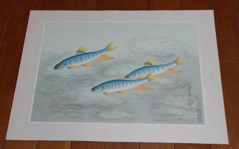 大野麦風: Japanese Rainbow Trout- Oikawa — オイカワ - Japanese Art Open Database
