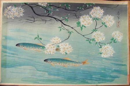 大野麦風: Rainbow Trout — ヤマメ - Japanese Art Open Database