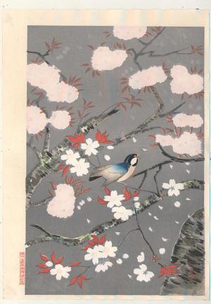 大野麦風: Bird and cherry blossoms - V1 — 桜と小鳥 - Japanese Art Open Database
