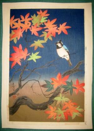Bakufu Ohno: Bird and tree (2nd state) - Japanese Art Open Database