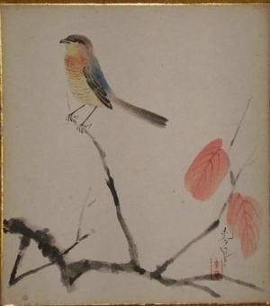 大野麦風: Bird on branch - Japanese Art Open Database