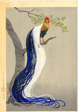 Bakufu Ohno: Long Tail Cock - Japanese Art Open Database