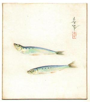 Bakufu Ohno: Sardines - Japanese Art Open Database