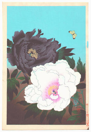 大野麦風: Two Peonies and Butterfly - Japanese Art Open Database