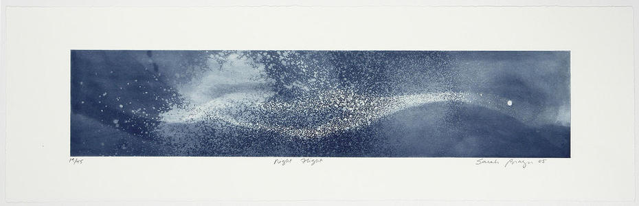Brayer Sarah: Night Flight - Japanese Art Open Database