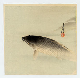 尾形月耕: The Rising Koi (Japanese carp) - Japanese Art Open Database