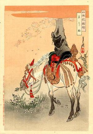 尾形月耕: A caparisonned horse standing next to a flowering Cherry tree - Japanese Art Open Database