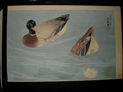 橋口五葉: Mandarin Ducks — 鴛鴦鴨 - Japanese Art Open Database