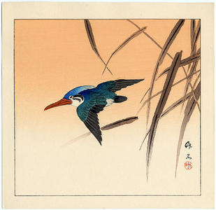 長町竹石: Kingfisher - Japanese Art Open Database