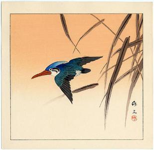 Nagamachi Chikuseki: Kingfisher - Japanese Art Open Database