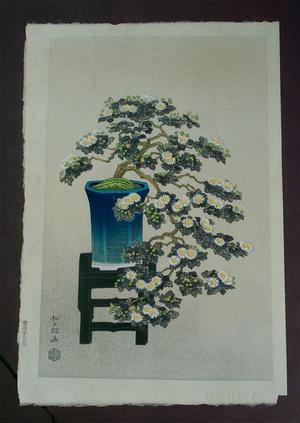 Ito Nisaburo: Potted Chrysanthyemums - Japanese Art Open Database