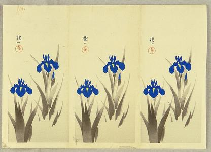 Ito Nisaburo: Two Iris - trial prints - Japanese Art Open Database