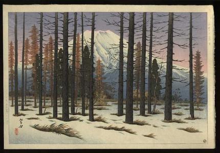 Henmi Takashi: Mt Fuji seen from Yamanaka - Japanese Art Open Database