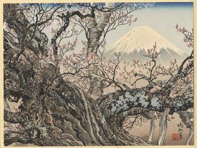 Jokata Kaiseki: The Komadome Cherry Tree and Mt Fuji - Japanese Art Open Database