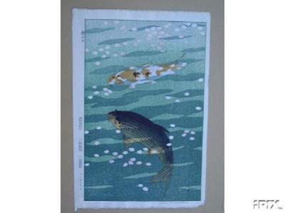 Kasamatsu Shiro: Two Carp, Koi - Japanese Art Open Database