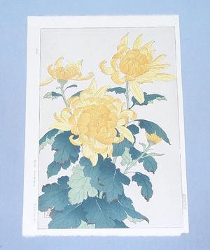 Kawarazaki Shodo: Chrysanthemum 1 - Japanese Art Open Database