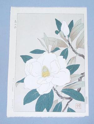 Kawarazaki Shodo: Flowers 11 - Japanese Art Open Database