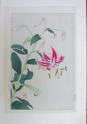 Kawarazaki Shodo: Flowers 8 - Japanese Art Open Database
