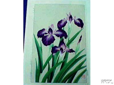 Kawarazaki Shodo: Iris - Japanese Art Open Database