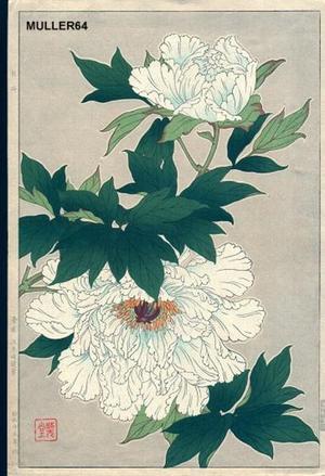 Kawarazaki Shodo: White Peonies - Japanese Art Open Database