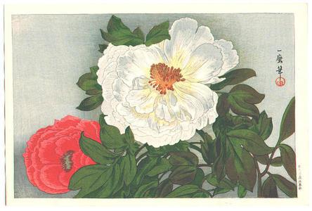 織田一磨: Peonies - Japanese Art Open Database