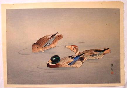 Keibun Matsumoto: Unknown, ducks in a pond - Japanese Art Open Database