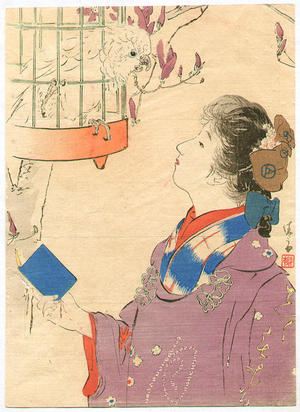 Kaburagi Kiyokata: Beauty and parrot - Japanese Art Open Database