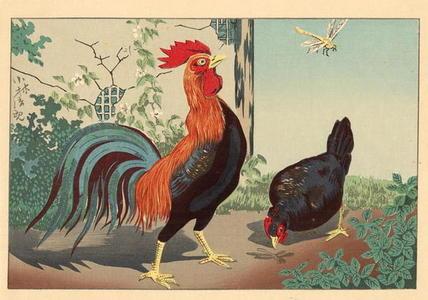 小林清親: Chicken and Dragonfly — 鶏と蜻蛉 - Japanese Art Open Database