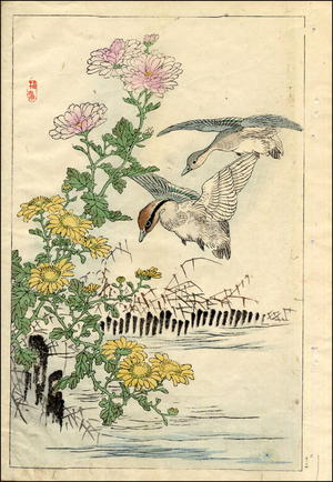 Kono Bairei: Ducks and Chrysanthemums - Japanese Art Open Database