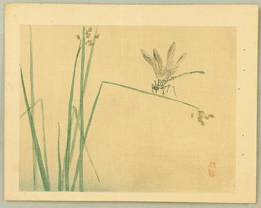 幸野楳嶺: Dragonfly - Japanese Art Open Database