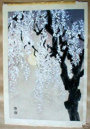 Kotozuka Eiichi: Cherry tree at night - Japanese Art Open Database