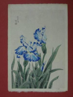 Kotozuka Eiichi: Iris — 花菖蒲 - Japanese Art Open Database