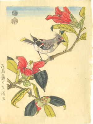 Kotozuka Eiichi: Bird on a branch - Japanese Art Open Database